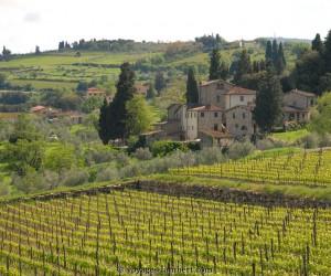 Toscana: cel mai bun timp pentru a merge