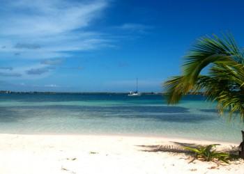 Insula Bahia