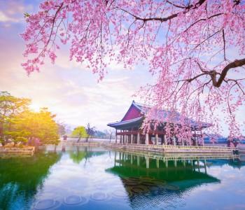Coreea de Sud