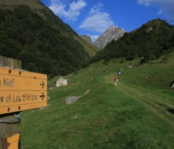 Pirinei