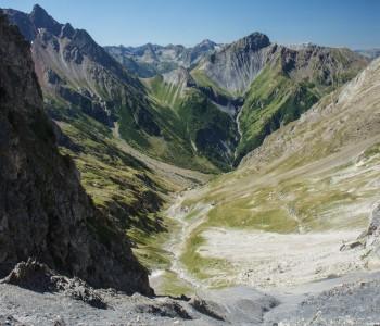 Ron-Alpi