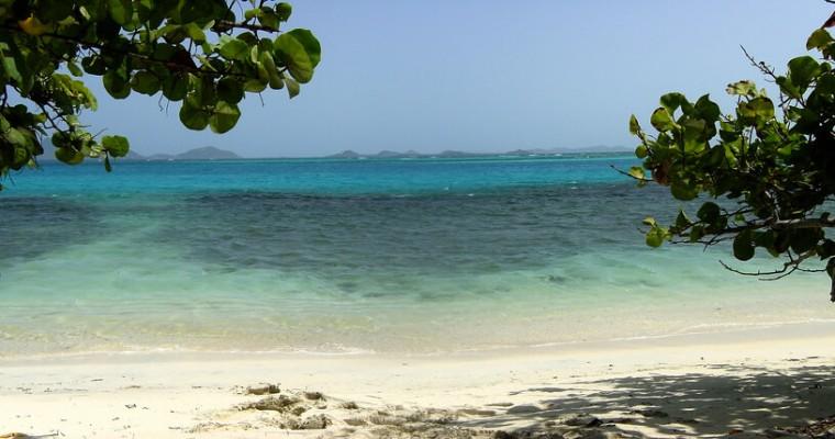 Sfântul Vicențiu și Grenadinele